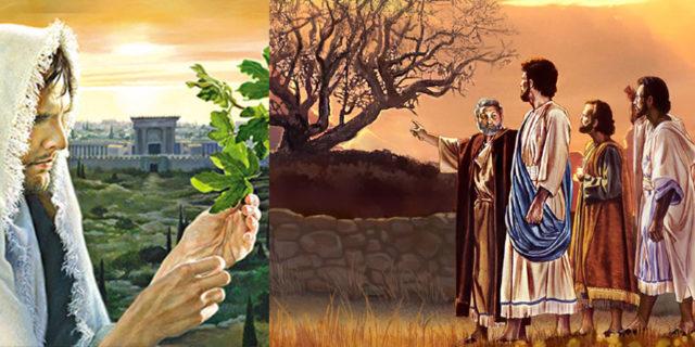 Иисус Христос и засохшая смоковница