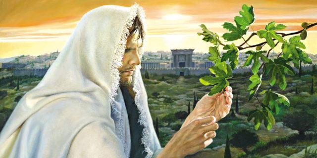 Иисус Христос ищет плоды на смоковнице