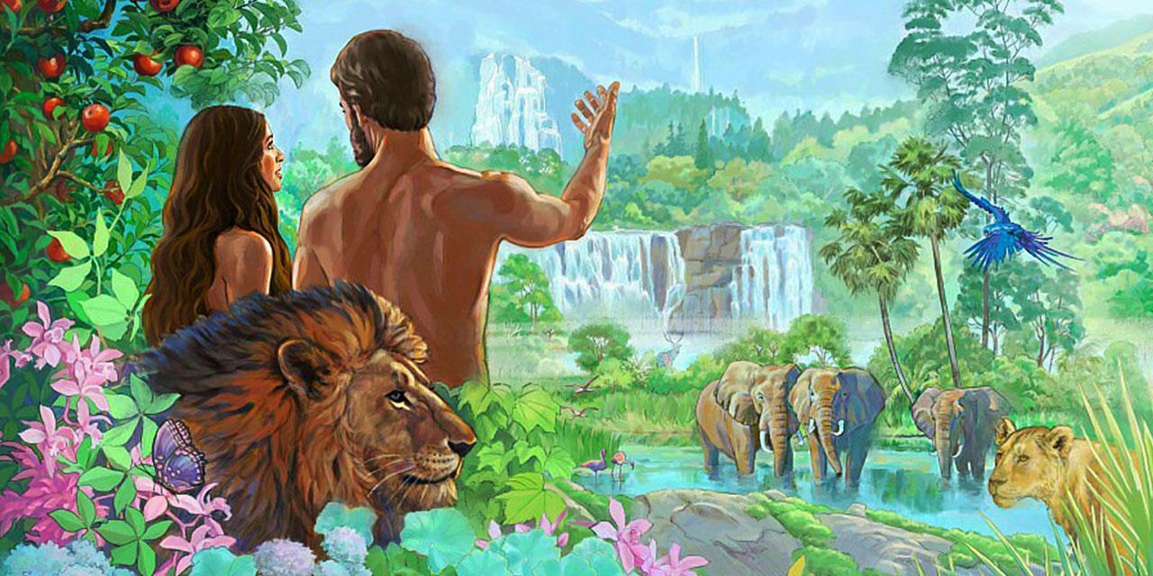 Сотворение животных и людей ветхий завет Библия