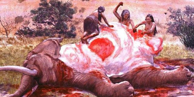 Вегетарианство или убийство животных 2