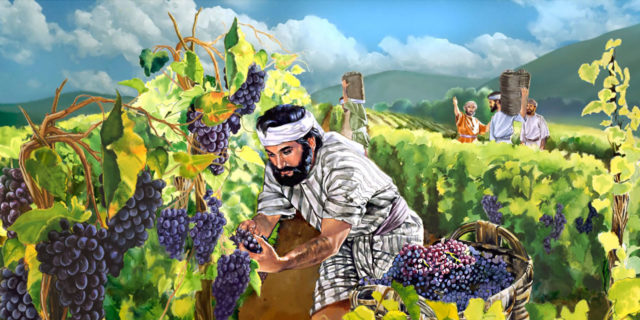Ахав и Навуфей царств ветхий завет библия