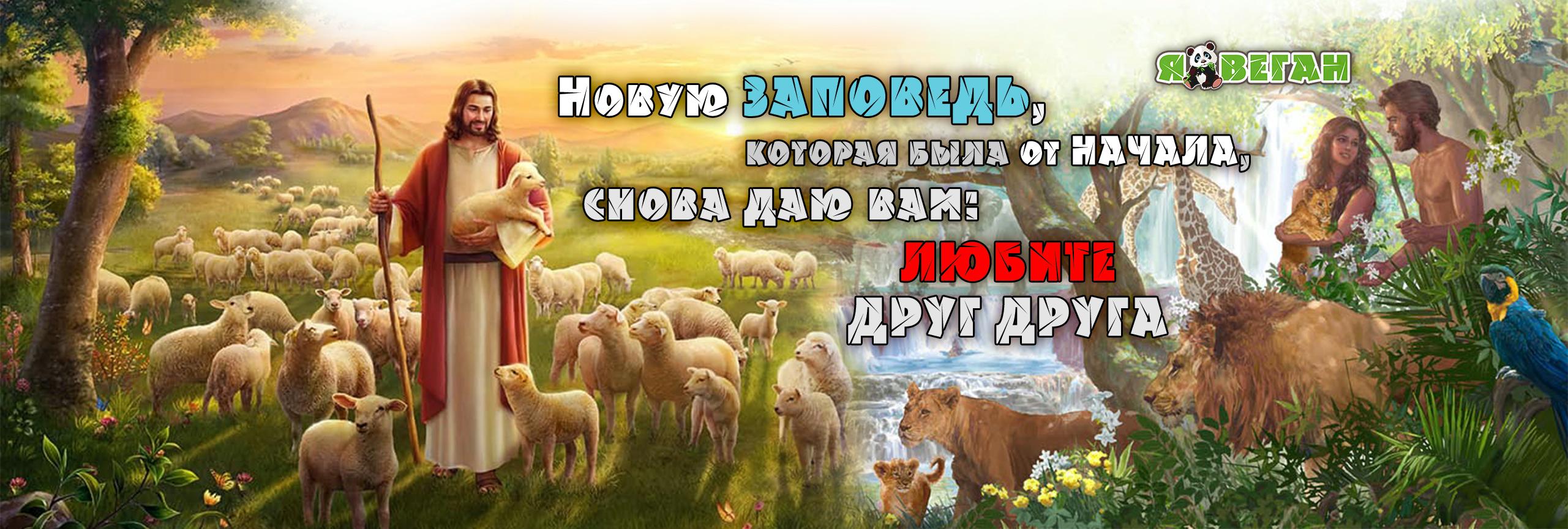 Новую ЗАПОВЕДЬ, которая была от НАЧАЛА, снова даю вам ЛЮБИТЕ ДРУГ ДРУГА бытие ветхий завет Библия