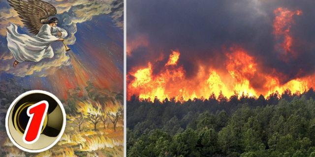 Откровение Иоанна Богослова Первый Ангел вострубил, и сделались град и огонь, смешанные с кровью, и пали на землю; и третья часть деревьев сгорела новый завет библия