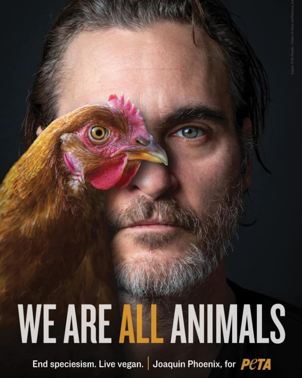 «Когда мы смотрим на мир глазами другого, животного, мы видим, что внутри мы все одинаковые - и что мы все заслуживаем того, чтобы жить без страданий», – Хоакин Феникс, Джокер, веган