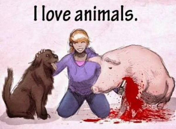 Можно ли любить животных и одновременно есть их #ВЕГЕТАРИАНСТВО #ВЕГАН #ВЕГАНСТВО #ВЕГЕТАРИАНЕЦ #GoVegan #ХРИСТОЛЮБ — christolube.ru