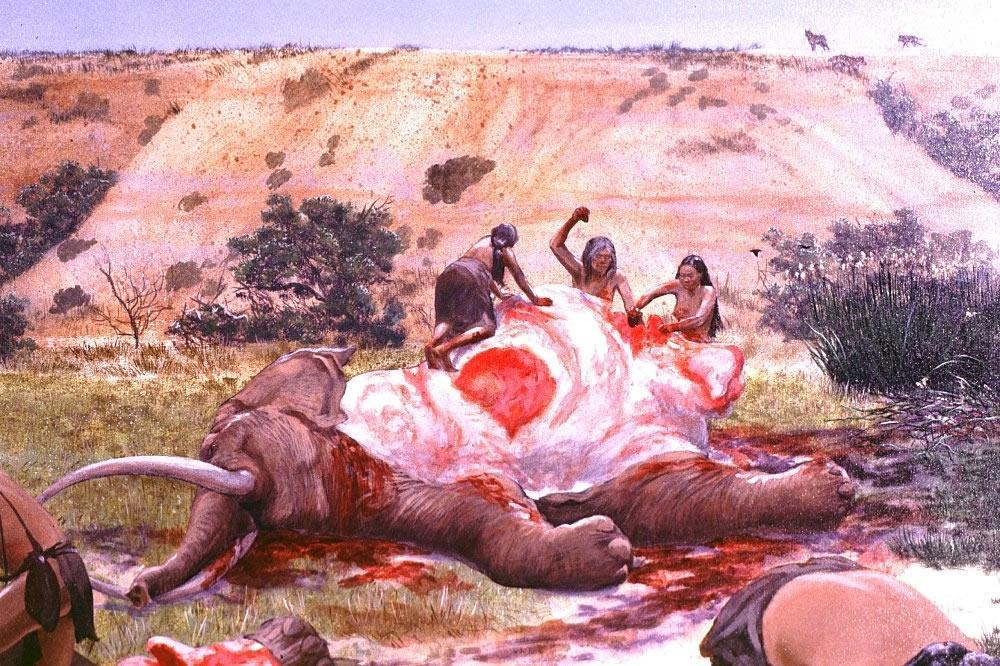 Наши предки ели мясо, почему нам нельзя #ВЕГЕТАРИАНСТВО #ВЕГАН #ВЕГАНСТВО #ВЕГЕТАРИАНЕЦ #GoVegan #ХРИСТОЛЮБ — christolube.ru