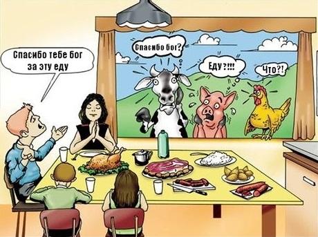 Поедание животных — неотъемлемая часть нашей культуры и традиций #ВЕГЕТАРИАНСТВО #ВЕГАН #ВЕГАНСТВО #ВЕГЕТАРИАНЕЦ #GoVegan #ХРИСТОЛЮБ — christolube.ru