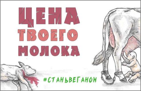 Цена твоего молока — убитый ребёнок и страдания матери #ВЕГЕТАРИАНСТВО #ВЕГАН #ВЕГАНСТВО #ВЕГЕТАРИАНЕЦ #GoVegan #ХРИСТОЛЮБ — christolube.ru