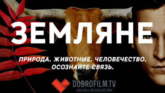 Земляне #ВЕГЕТАРИАНСТВО #ВЕГАН #ВЕГАНСТВО #ВЕГЕТАРИАНЕЦ #GoVegan #ХРИСТОЛЮБ — christolube.ru