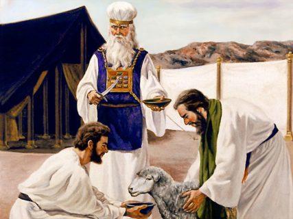 Аарон приносит жертву Богу левитское служение в скинии ветхий завет библия