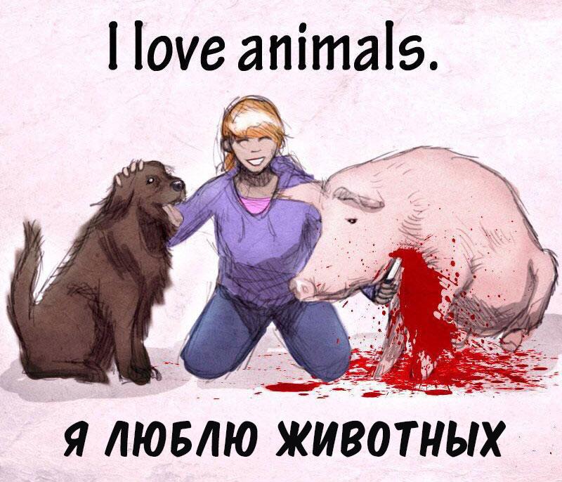 Можно ли любить животных и одновременно есть их 1 #ВЕГЕТАРИАНСТВО #ВЕГАН #ВЕГАНСТВО #ВЕГЕТАРИАНЕЦ #GoVegan #ХРИСТОЛЮБ — christolube.ru